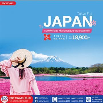 ทัวร์ญี่ปุ่น Pinkmoss Festival Tokyo Fuji Pinkmoss 4 วัน 3 คืน โดยไทยแอร์เอเชียเอ๊กซ์[XJ]