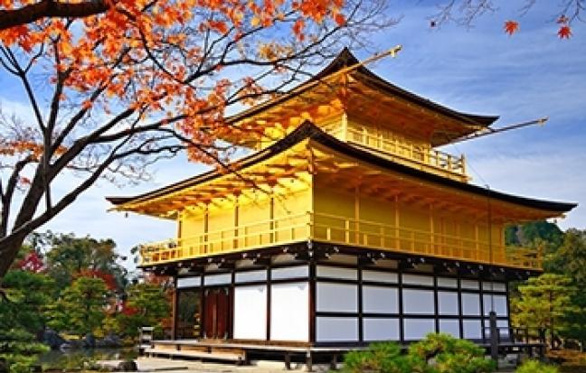 ทัวร์ญี่ปุ่น INFINITY FULLDAY