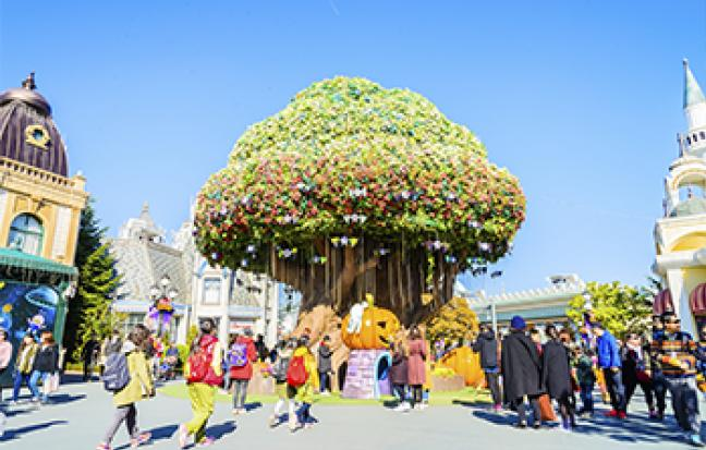 ทัวร์เกาหลี สวนสนุกเอเวอร์แลนด์