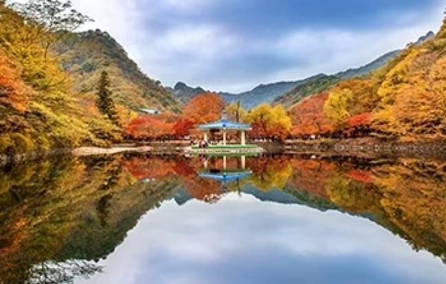 ทัวร์เกาหลี ULTRA PREMIUM SEOUL