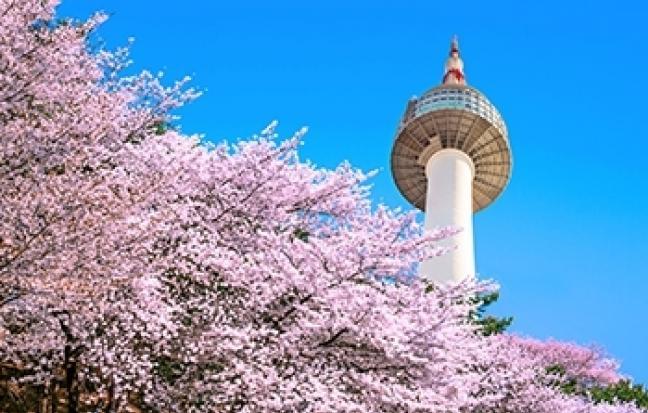 ทัวร์เกาหลี KOREA หน้าร้อน อ้อนรัก