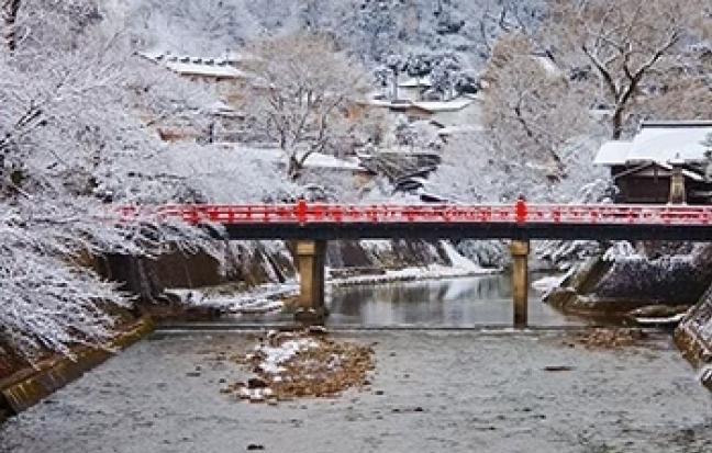 ทัวร์ญี่ปุ่น SENDAI IWATE FUKUSHIMA  PREMIUM ICE MONSTER IN LOVE