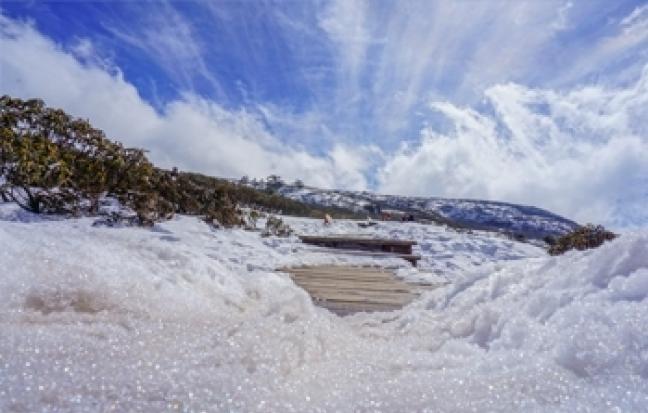ทัวร์จีน เฉิงตู ภูผาหิมะการ์เซีย จิ่วจ้ายโกว หวงหลง