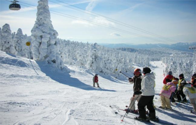 ทัวร์ญี่ปุ่น SENDAI SNOW MONSTER