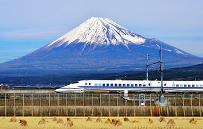 ทัวร์ญี่ปุ่น  SPARKLING SAKURA TOKYO