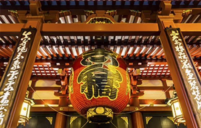 ทัวร์ญี่ปุ่น TOKYO FUJI TULIP TOKYO WONDERFUL TULIP