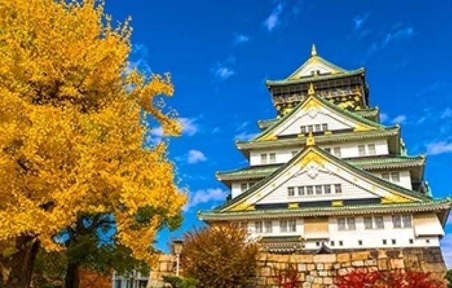 ทัวร์ญี่ปุ่น Autumn & Winter Golden Route Osaka Tokyo