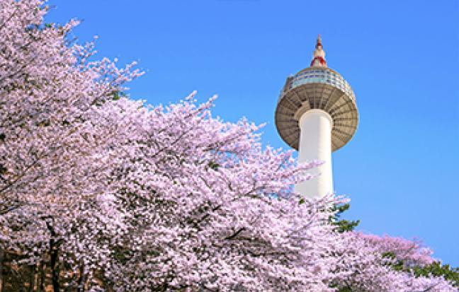 ทัวร์เกาหลี EASY KOREA AUTUMN LOVE