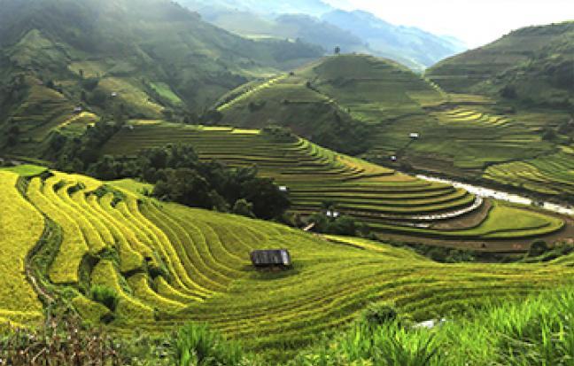 ทัวร์เวียดนาม เวียดนามเหนือ ฮานอย-ซาปา-จ่างอาน-ฟานซีปัน