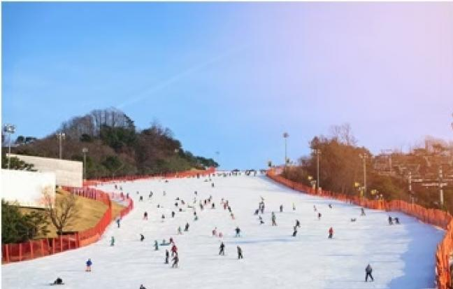 ทัวร์ญี่ปุ่น โอซาก้า เกียวโต ทาคายาม่า Ski White Snow