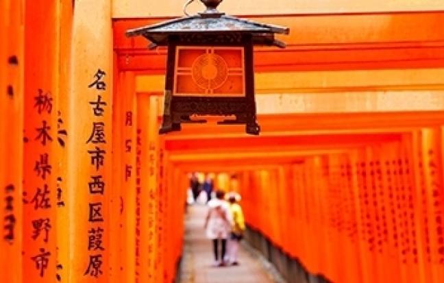 ทัวร์ญี่ปุ่น WOW-PANORAMA STRAWBERRYTULIP-ILLUMINATION
