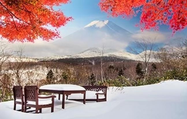 ทัวร์ญี่ปุ่น TOKYO SNOW LAND HAPPY NEW YEAR