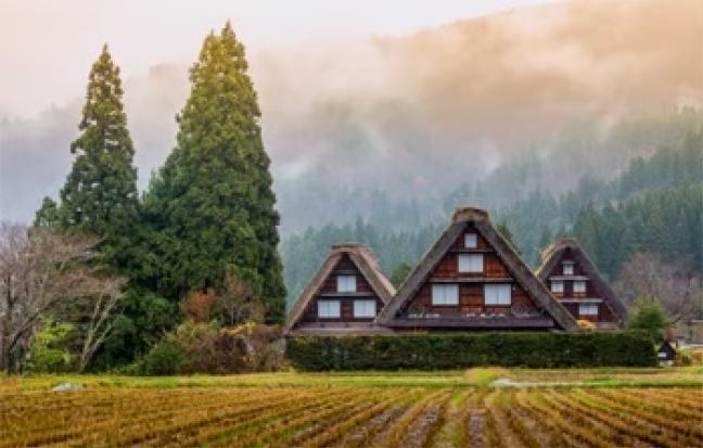 ทัวร์ญี่ปุ่น โอซาก้า เกียวโต ทาคายาม่า โตเกียว Wonderful Honshu