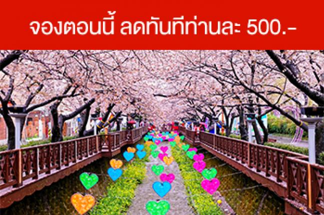 ทัวร์เกาหลี  Cherry Blossom & April Snow Festival