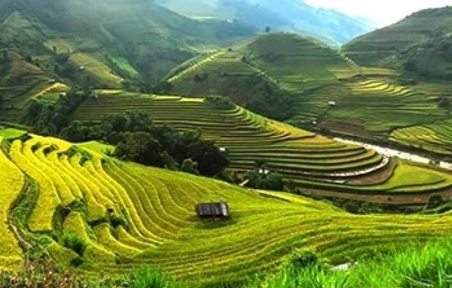 ทัวร์เวียดนาม เวียดนามเหนือ ฮานอย ซาปา ฮาลองบก