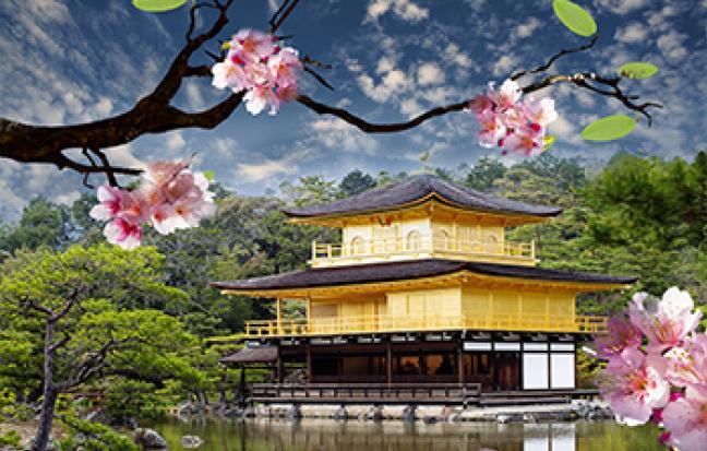 ทัวร์ญี่ปุ่น โตเกียว เกียวโต โอซาก้า SAKURA THE PARK
