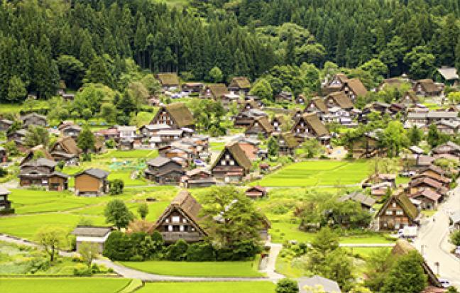 ทัวร์ญี่ปุ่น OSAKA SAKURA FREE DAY