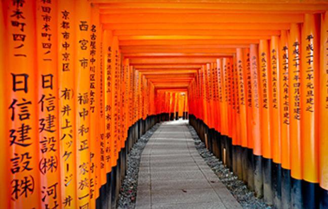 ทัวร์ญี่ปุ่น NEW LOVE SAKURA