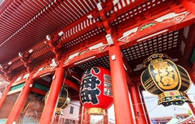ทัวร์ญี่ปุ่น TOKYO FUJI ซุปตาร์ ทุ่งลาเวนเดอร์