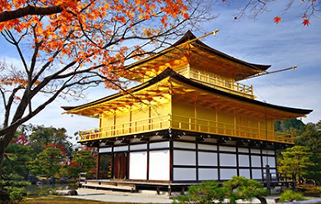 ทัวร์ญี่ปุ่น OSAKA KYOTO TOTTORI ซุปตาร์ ซากุระสีชมพู