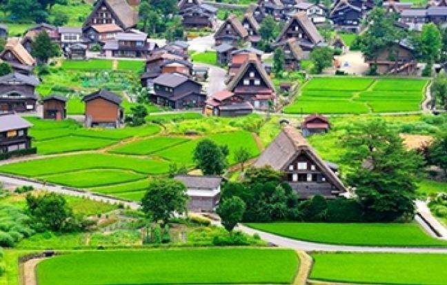 ทัวร์ญี่ปุ่น Super Golden Route โอซาก้า เกียวโต ทาคายาม่า โตเกียว