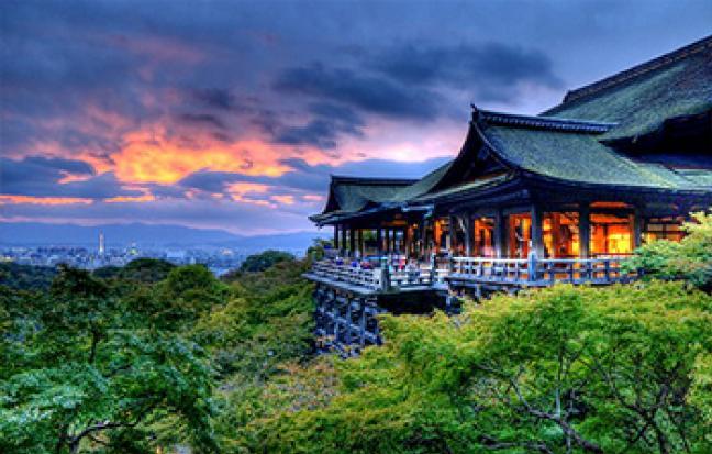 ทัวร์ญี่ปุ่น โอซาก้า เกียวโต โตเกียว Cherry Blossom