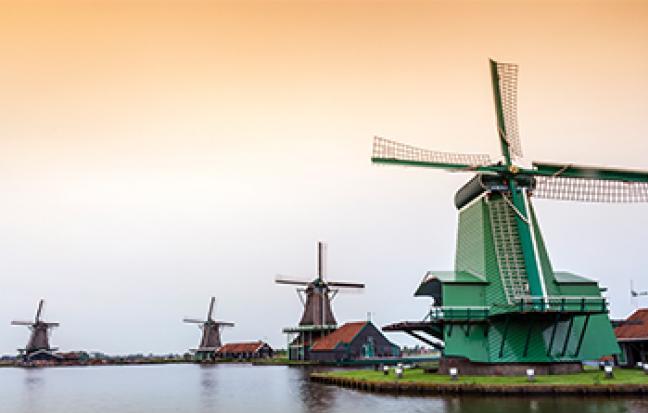ทัวร์ยุโรป ฝรั่งเศส เบลเยี่ยม เนเธอร์แลนด์ TULIP FESTIVAL 2019