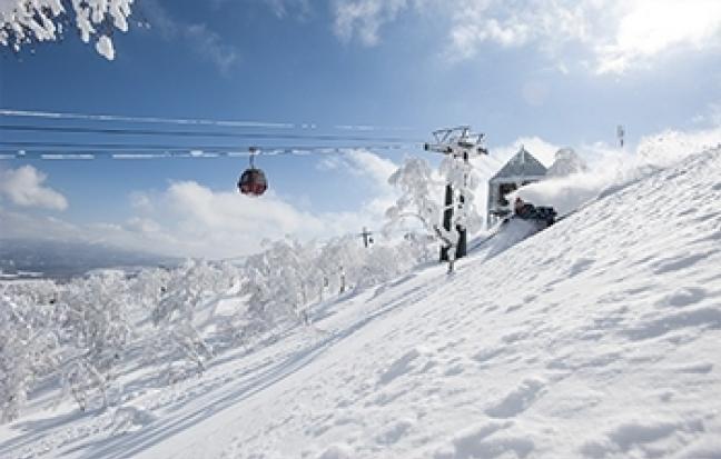 ทัวร์ญี่ปุ่น GO HOKKAIDO SNOW FESTIVAL