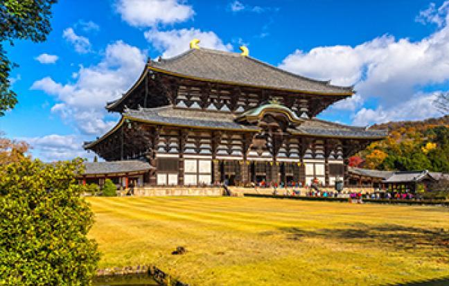 ทัวร์ญี่ปุ่น ♔HAPPY OSAKA KYO NARA♔ ฟ้าประทาน♥♥