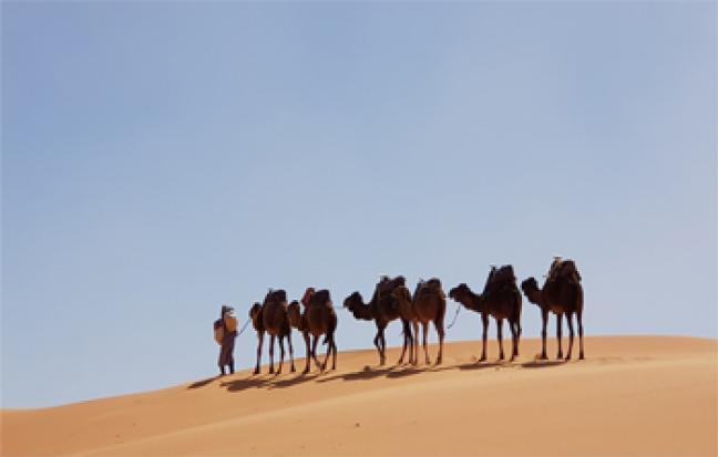 ทัวร์แอฟริกา Colorful of  Morocco