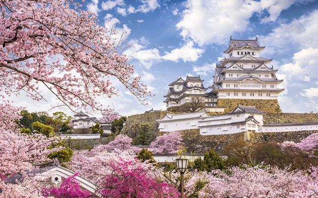 ทัวร์ญี่ปุ่น PRO OSAKA KYOTO PINK WOW