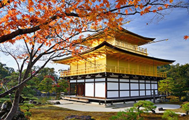 ทัวร์ญี่ปุ่น GRAND JAPAN ALPS โอซาก้า นาโกย่า ทาคายาม่า เกียวโต โตเกียว