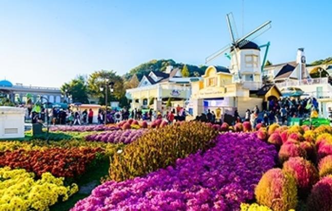 ทัวร์เกาหลี โลกนี้ สีชมพู (บินค่ำ-กลับเช้า )